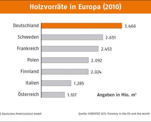 Aktuelle Holzvorräte in Europa